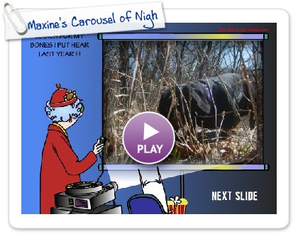 Click to play Maxine's Carousel of Nightmares