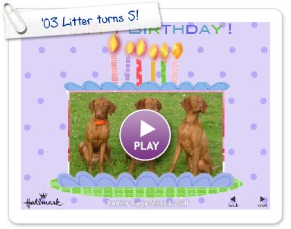 Click to play '03 Litter turns 5!
