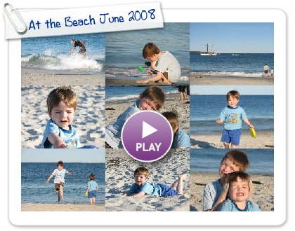 Click to play At the Beach June 2008