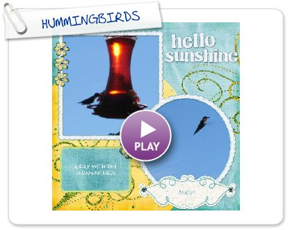 Click to play HUMMINGBIRDS