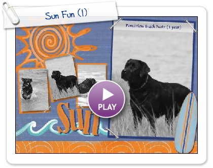 Click to play Sun Fun