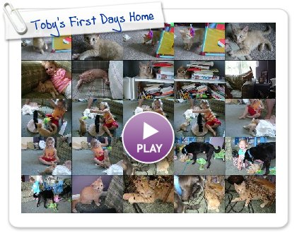 Click to play Toby's First Days Home