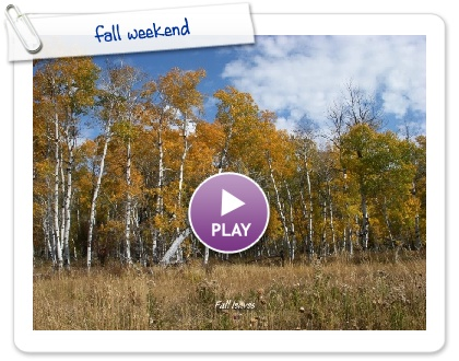 Click to play fall weekend