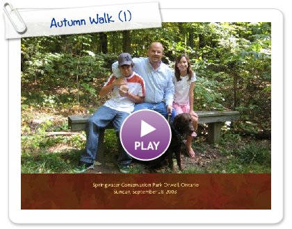 Click to play Autumn Walk