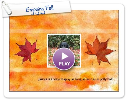 Click to play Enjoying Fall
