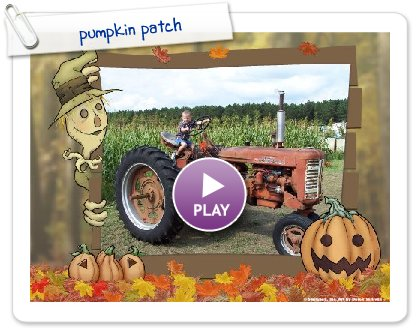 Click to play pumpkin patch