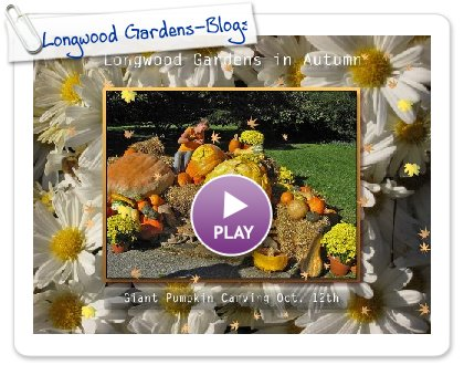 Click to play Longwood Gardens-Blogspot
