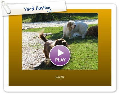Click to play this Smilebox slideshow: Yard Hunting