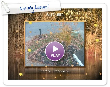 Click to play Not My Leaves!