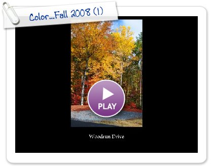 Click to play Color...Fall 2008
