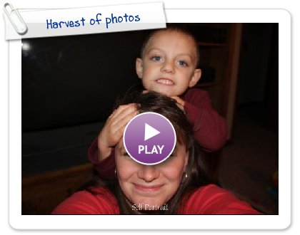 Click to play Harvest of photos