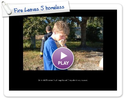 Click to play Fire Leaves 5 homeless