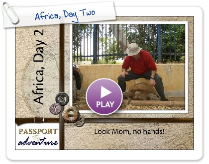 Click to play Africa, Day Two