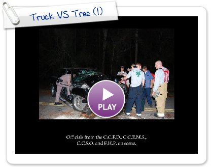 Click to play Truck VS Tree