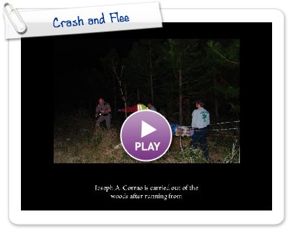 Click to play Crash and Flee