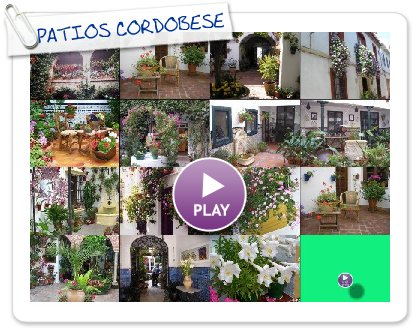 Click to play PATIOS CORDOBESES CHARI