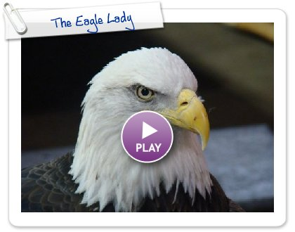 Click to play The Eagle Lady