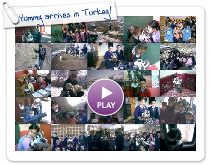 Click to play Yummy arrives in Turkey!