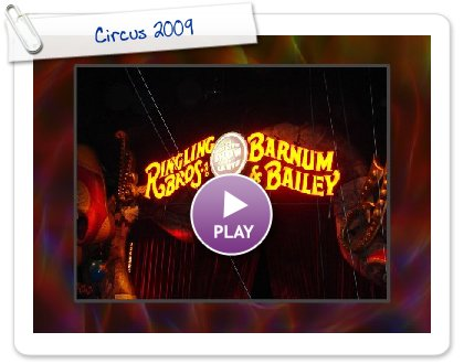 Click to play Circus 2009