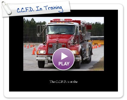 Click to play C.C.F.D. In Training