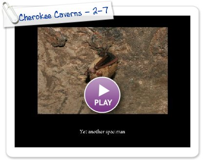 Click to play Cherokee Caverns - 2-7-0