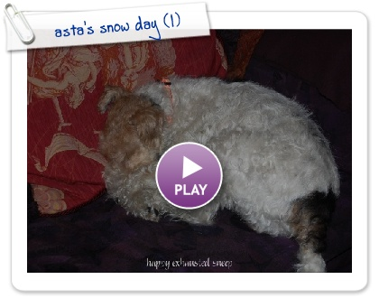 Click to play this Smilebox slideshow: asta's snow day