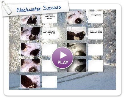 Click to play this Smilebox postcard: Blackwater Success