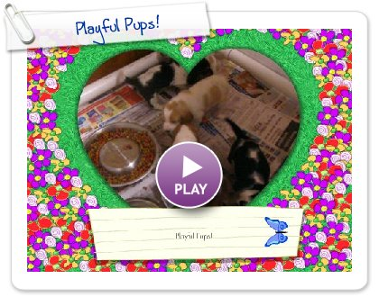 Click to play this Smilebox greeting: Playful Pups!