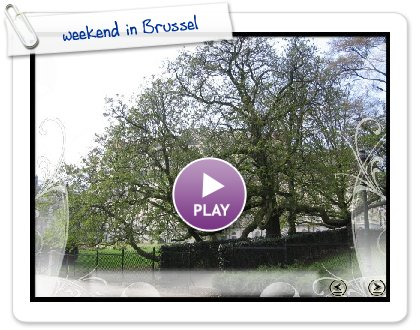 Click to play this Smilebox slideshow: weekend in Brussel
