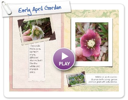 Click to play this Smilebox photobook: Early April Garden