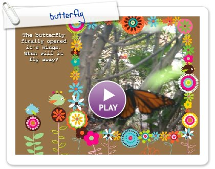 Click to play this Smilebox slideshow: butterfly