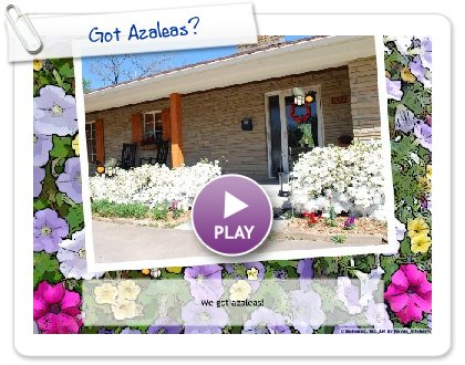 Click to play this Smilebox slideshow: Got Azaleas?