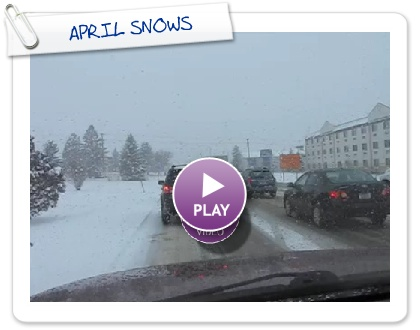 Click to play this Smilebox slideshow: APRIL SNOWS
