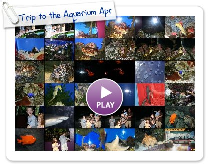 Click to play this Smilebox slideshow: Trip to the Aquarium April 22,2009