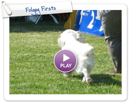 Click to play this Smilebox slideshow: Folgey Firsts