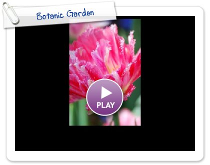 Click to play this Smilebox slideshow: Botanic Garden