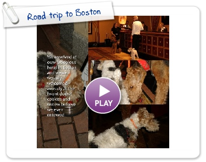 Click to play this Smilebox photobook: Road trip to Boston