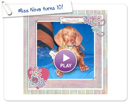 Click to play this Smilebox scrapbook: Miss Nova turns 10!