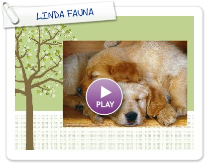 Click to play this Smilebox greeting: LINDA FAUNA