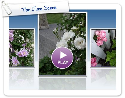 Click to play this Smilebox slideshow: The June Scene