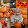 Halloween Collage - Collage